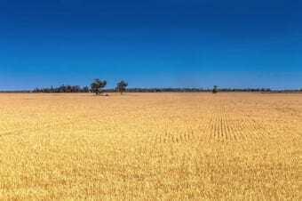 Paesaggio di Moree