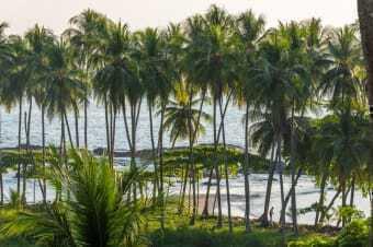 Paesaggio di Tamarindo