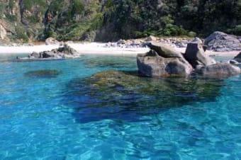 sea of Cosenza