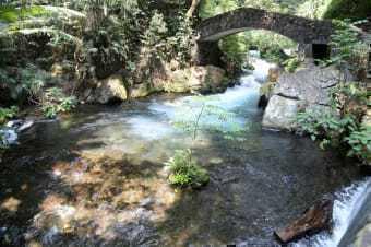 Parco Lazaro Cardenas