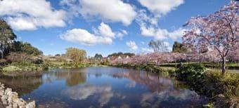 Giardini Palmerston North